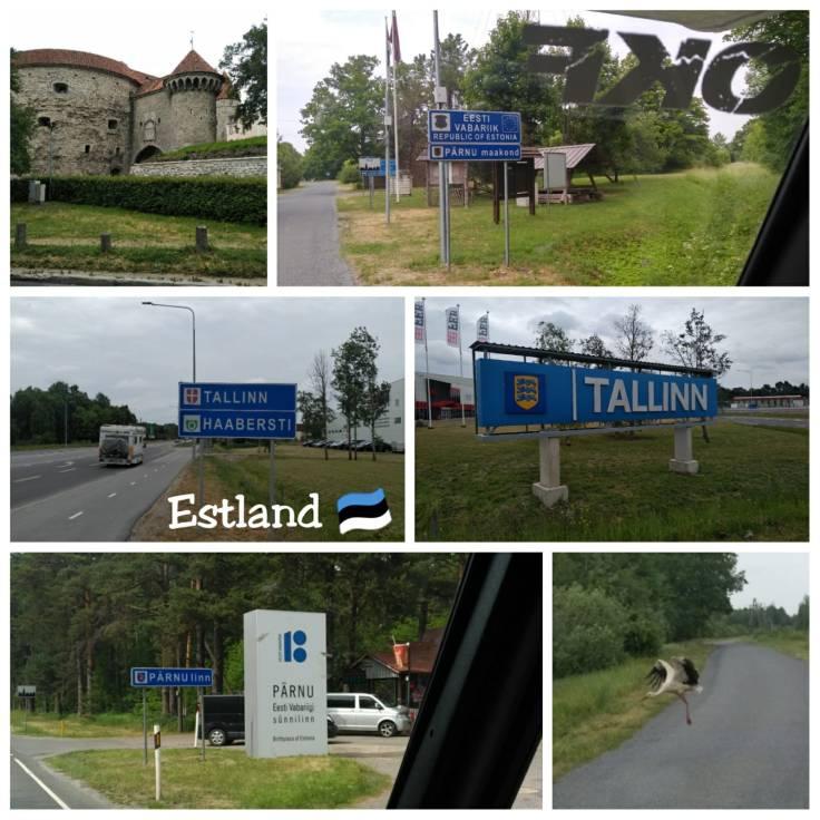 Collage Estland